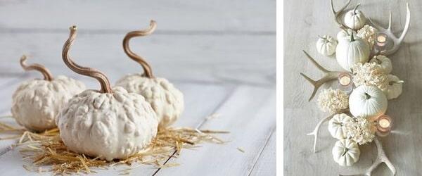 Бели тикви и еленски рога като централен елемент на трапеза
